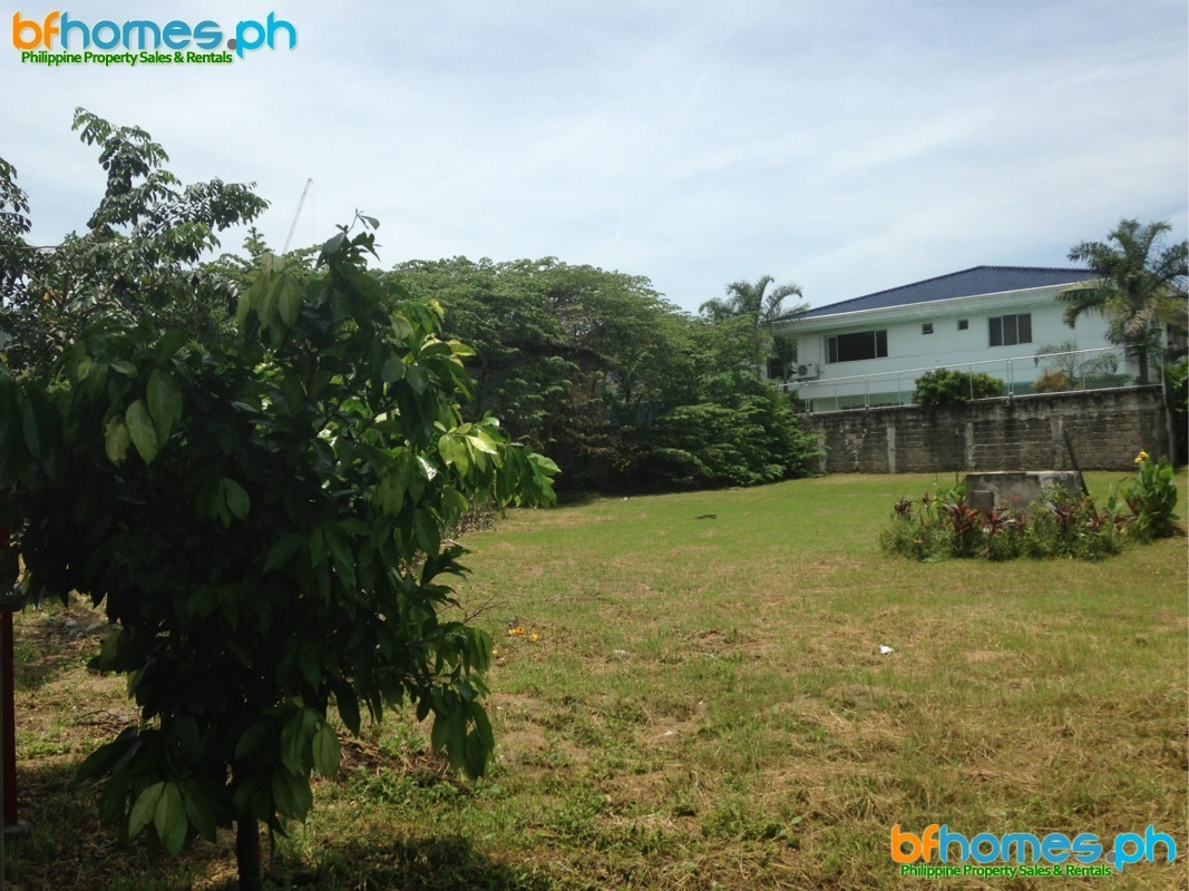 647sqm Lot for Sale in Pacific Village Muntinlupa.