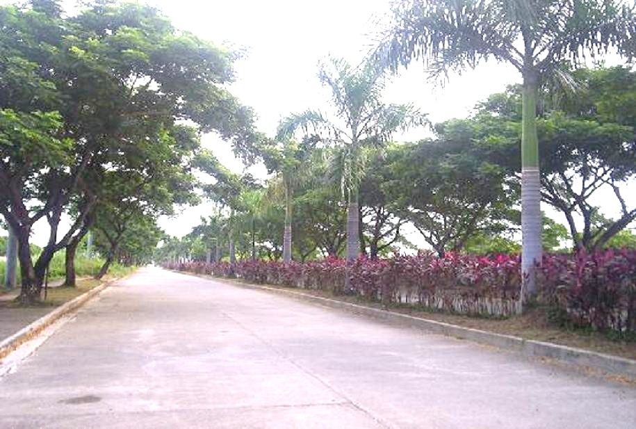 FOR SALE: Lot / Land / Farm Bulacan > Other areas 17