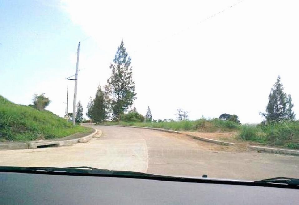 FOR SALE: Lot / Land / Farm Rizal 15
