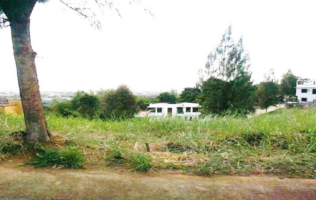 FOR SALE: Lot / Land / Farm Rizal 8