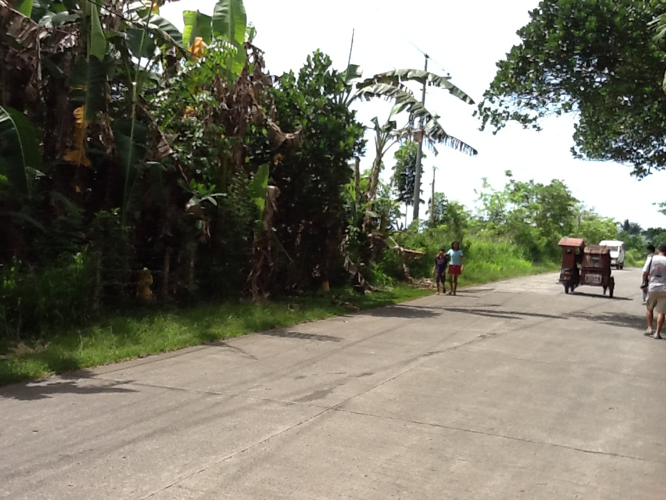 LOT LOCATED AT DEL ROSARIO NAGA CITY CAMARINES SUR