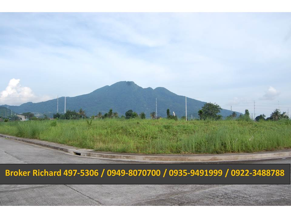 FOR SALE: Lot / Land / Farm Laguna > Calamba 10