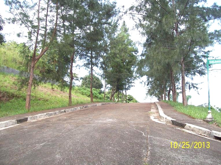 FOR SALE: Lot / Land / Farm Rizal > Antipolo 18