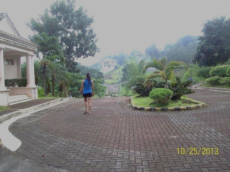 FOR SALE: Lot / Land / Farm Rizal > Antipolo 24