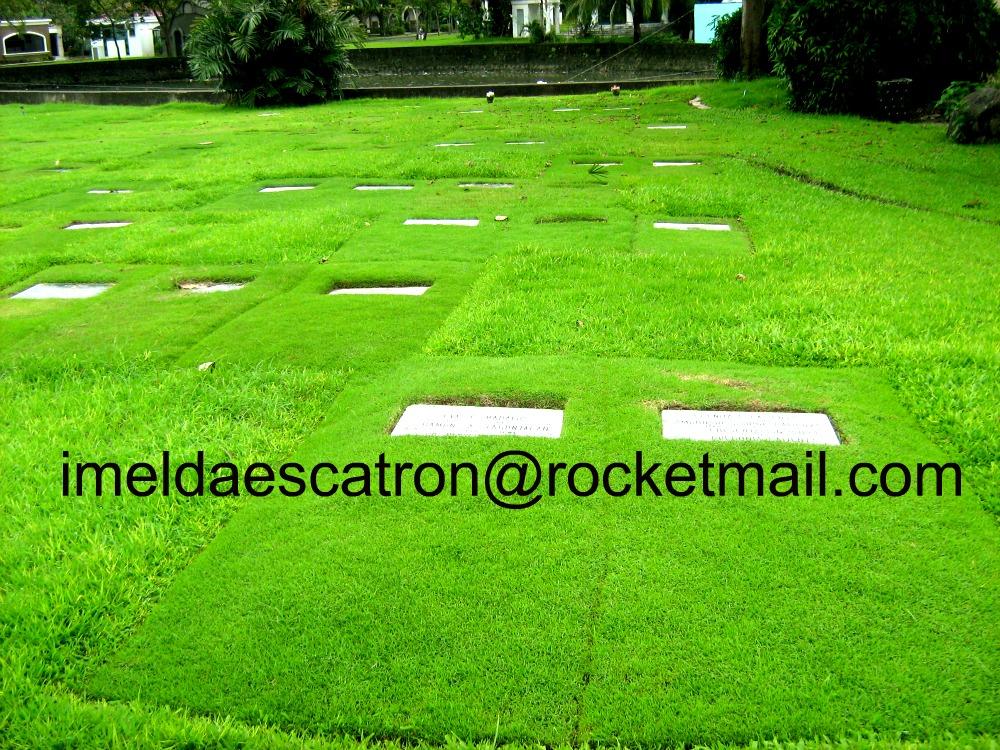 FOR SALE: Memorial Manila Metropolitan Area > Paranaque