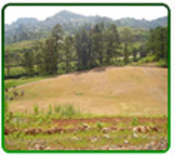 FOR SALE: Lot / Land / Farm Benguet > Baguio 5