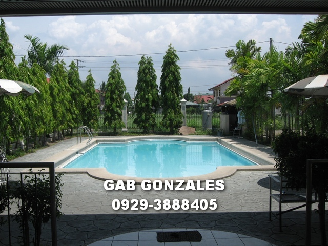 FOR SALE: Lot / Land / Farm Rizal > Cainta 3