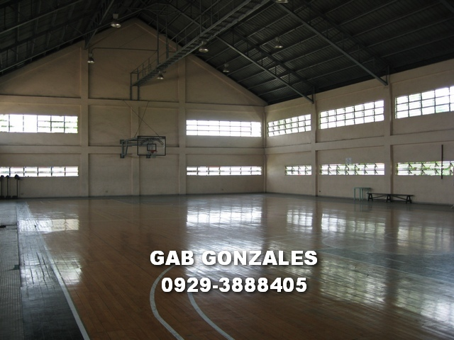 FOR SALE: Lot / Land / Farm Rizal > Cainta 4