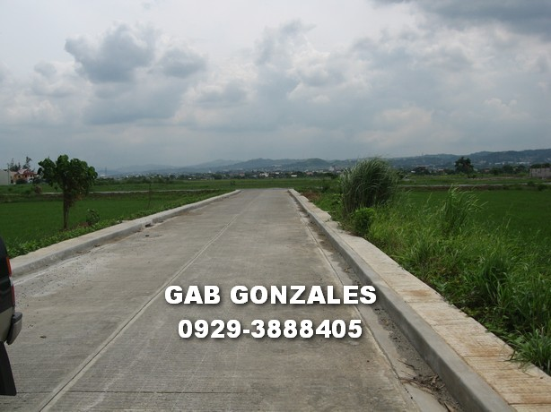 FOR SALE: Lot / Land / Farm Rizal > Cainta 5