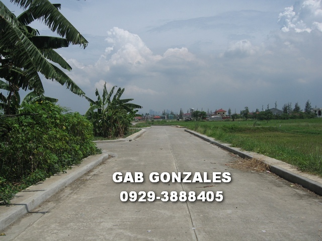FOR SALE: Lot / Land / Farm Rizal > Cainta 6