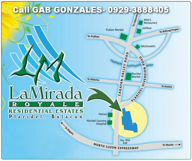 FOR SALE: Lot / Land / Farm Bulacan 6