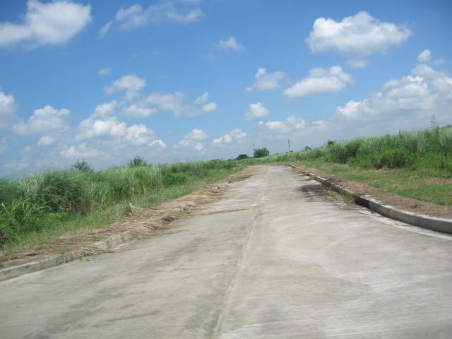 FOR SALE: Lot / Land / Farm Nueva Ecija > Cabanatuan 7