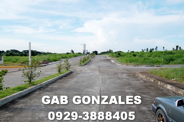 FOR SALE: Lot / Land / Farm Laguna > Calamba 2