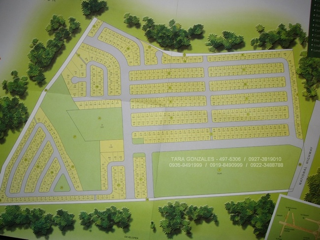FOR SALE: Lot / Land / Farm Laguna > Calamba 6