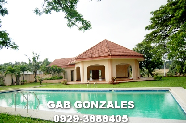 FOR SALE: Lot / Land / Farm Rizal > Antipolo 1