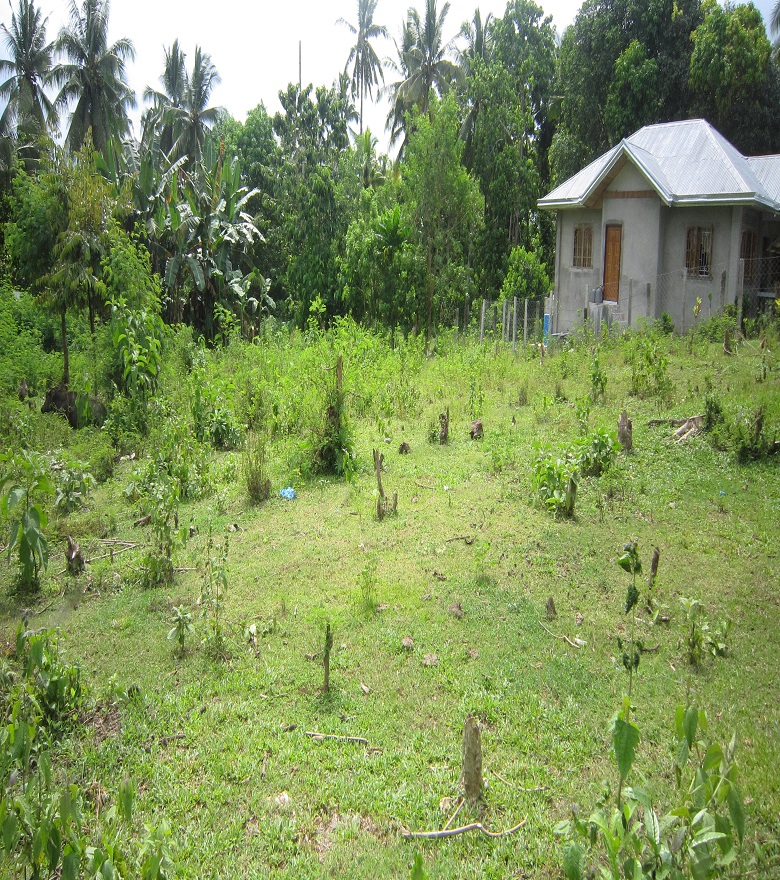 FOR SALE: Lot / Land / Farm Davao 2