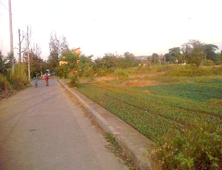 FOR SALE: Lot / Land / Farm Rizal > Cainta 15