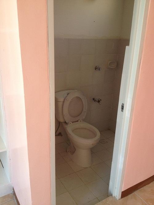 flash type toilet and bath
