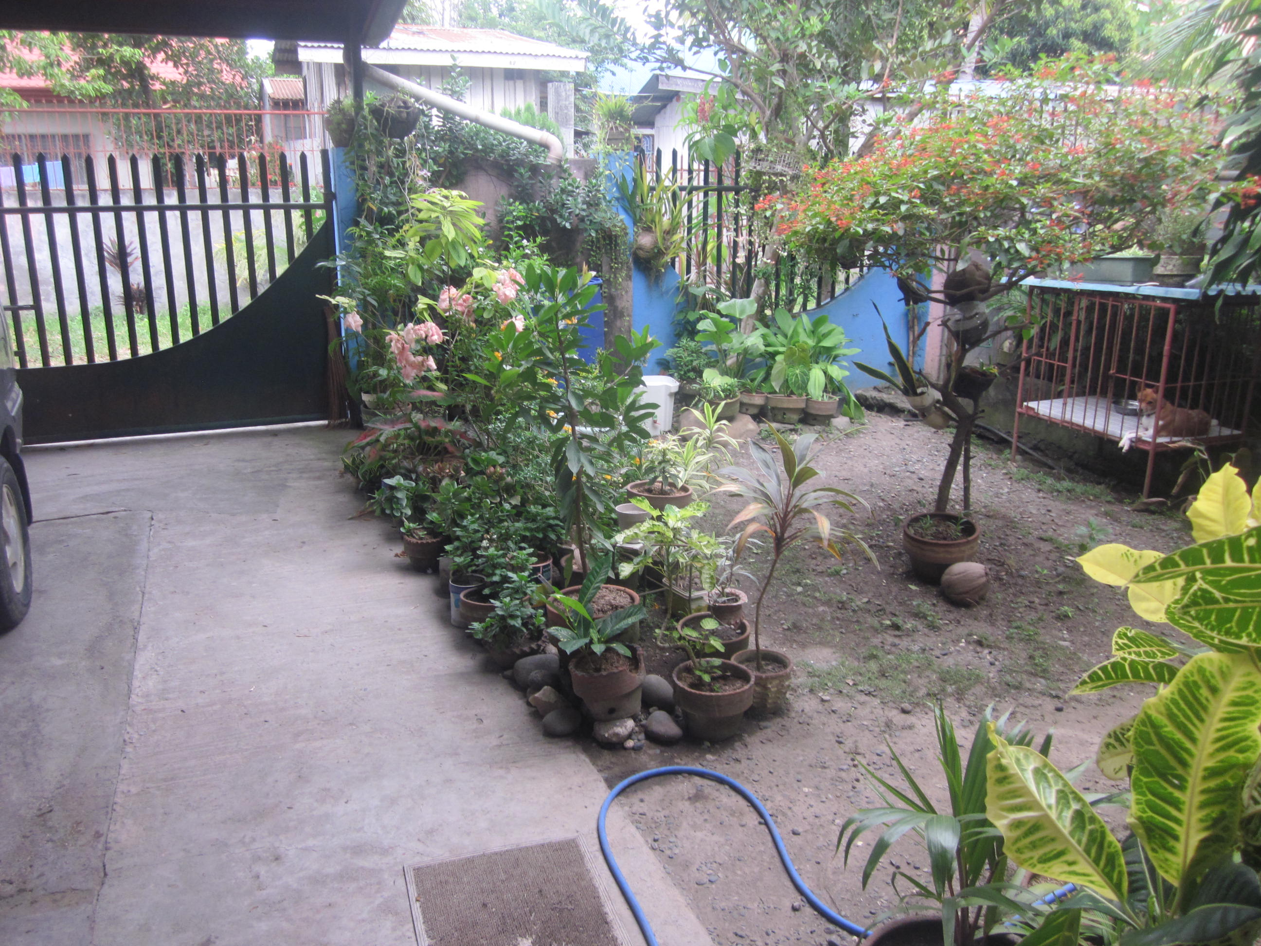 FOR SALE: House Davao >Davao City 25