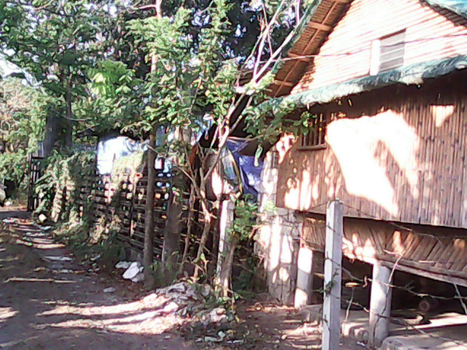 FOR SALE: Lot / Land / Farm Cavite > Silang 3