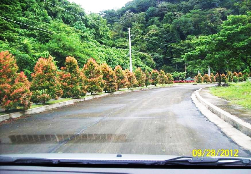 FOR SALE: Lot / Land / Farm Rizal 7