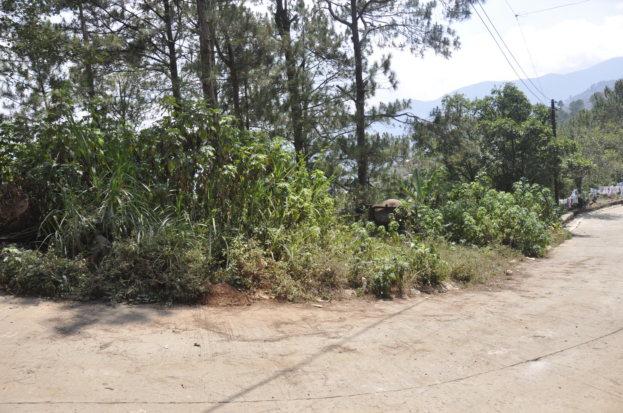 FOR SALE: Lot / Land / Farm Benguet > Baguio 1