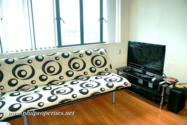 sofa & TV