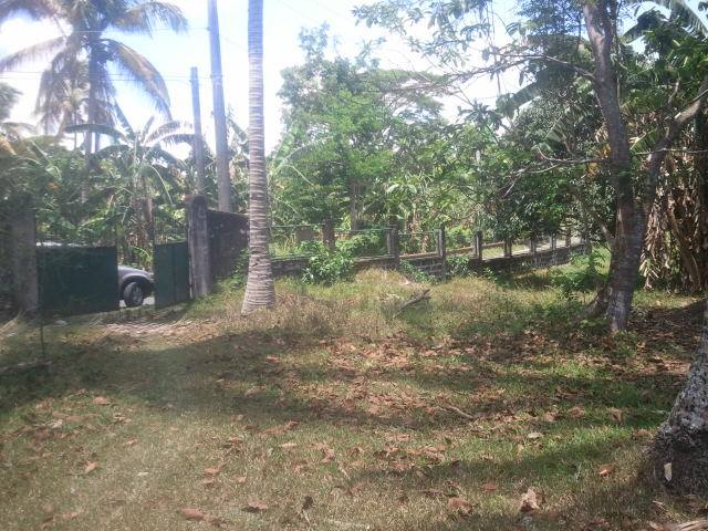 FOR SALE: Lot / Land / Farm Laguna