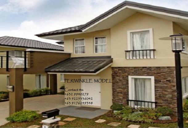 Periwinkle Model