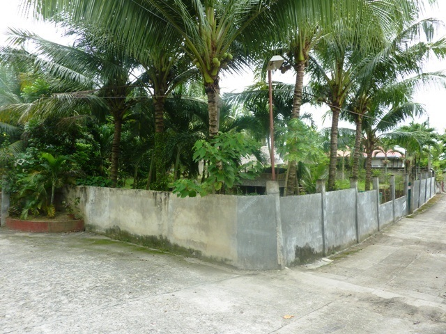 FOR SALE: Lot / Land / Farm Cebu 7