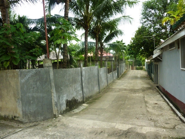 FOR SALE: Lot / Land / Farm Cebu 8
