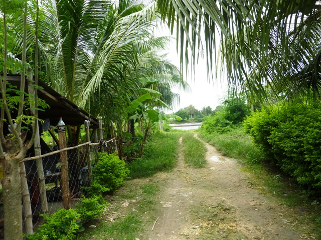 FOR SALE: Lot / Land / Farm Cebu 0