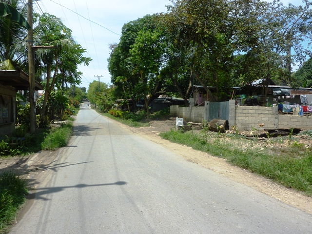 FOR SALE: Lot / Land / Farm Cebu 3