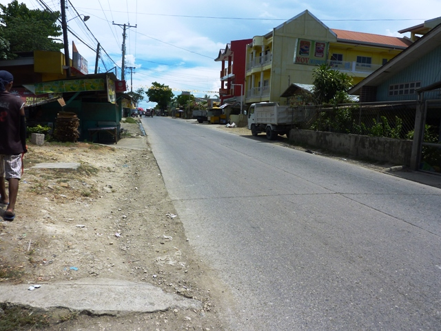 FOR SALE: Lot / Land / Farm Cebu
