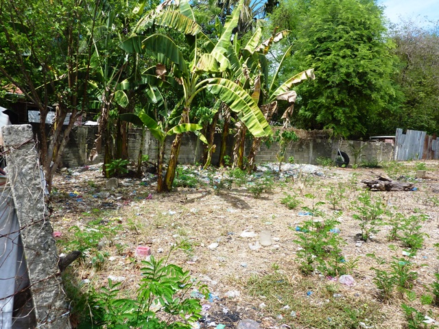 FOR SALE: Lot / Land / Farm Cebu 5