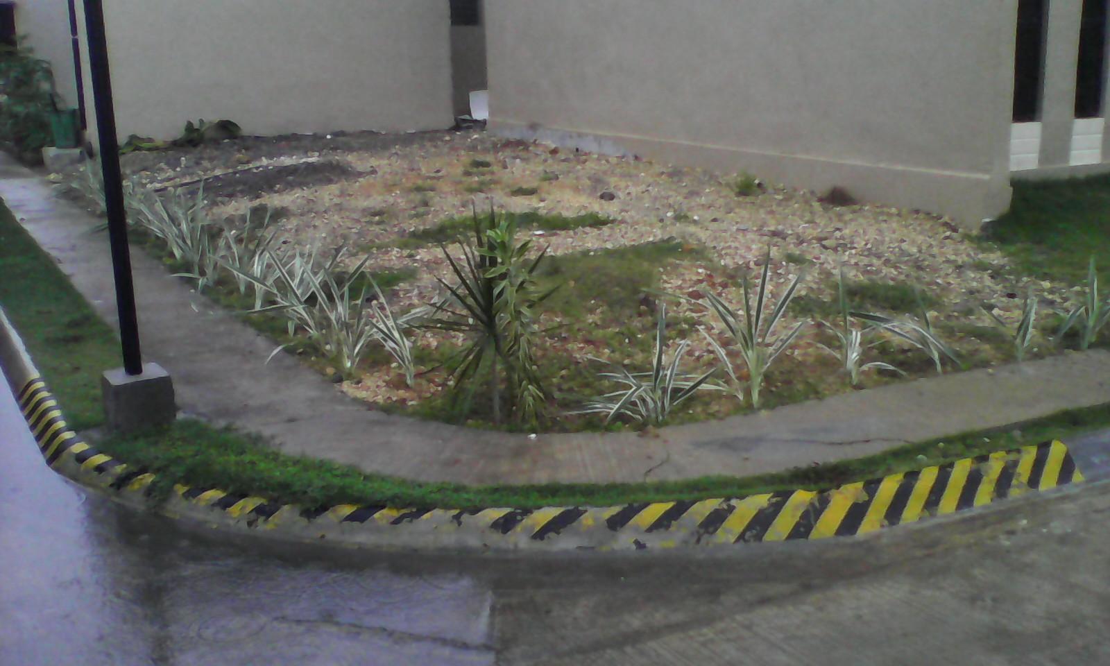 FOR RENT / LEASE: House Cebu > Mactan 7