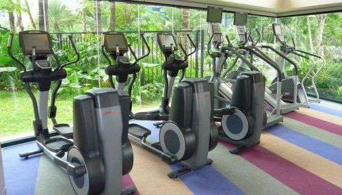 Fitness Center Ellipticals & Stairclimbers