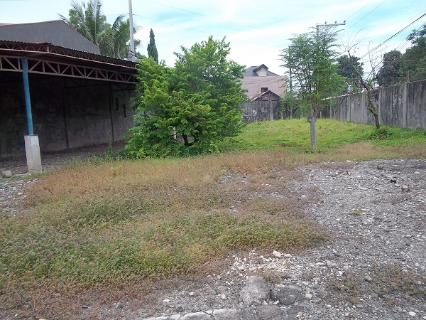 FOR SALE: Lot / Land / Farm Cebu > Other areas 4
