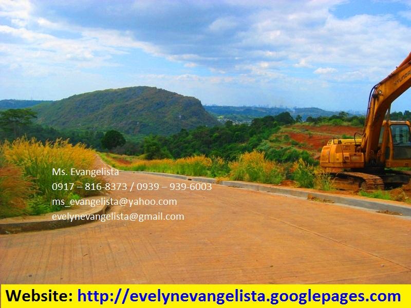FOR SALE: Lot / Land / Farm Rizal 4
