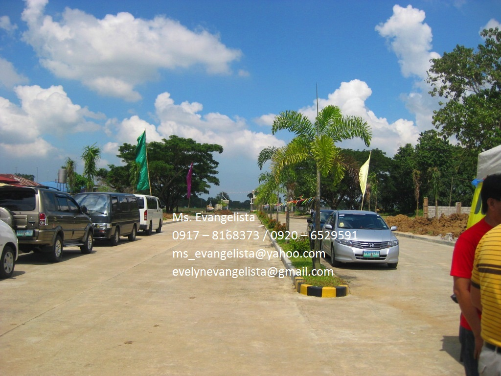 FOR SALE: Lot / Land / Farm Cavite 2