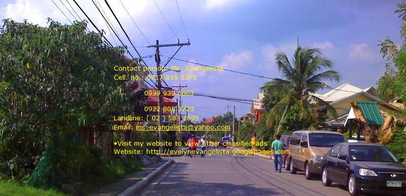 FOR SALE: Lot / Land / Farm Rizal 1