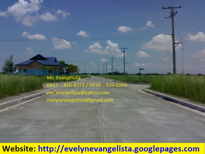 FOR SALE: Lot / Land / Farm Nueva Ecija > Cabanatuan 3