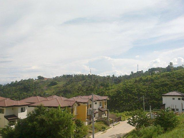 FOR SALE: Lot / Land / Farm Cebu 2