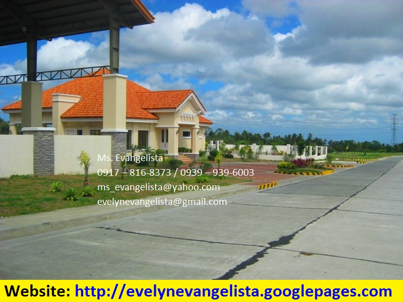 FOR SALE: Lot / Land / Farm Cavite 3