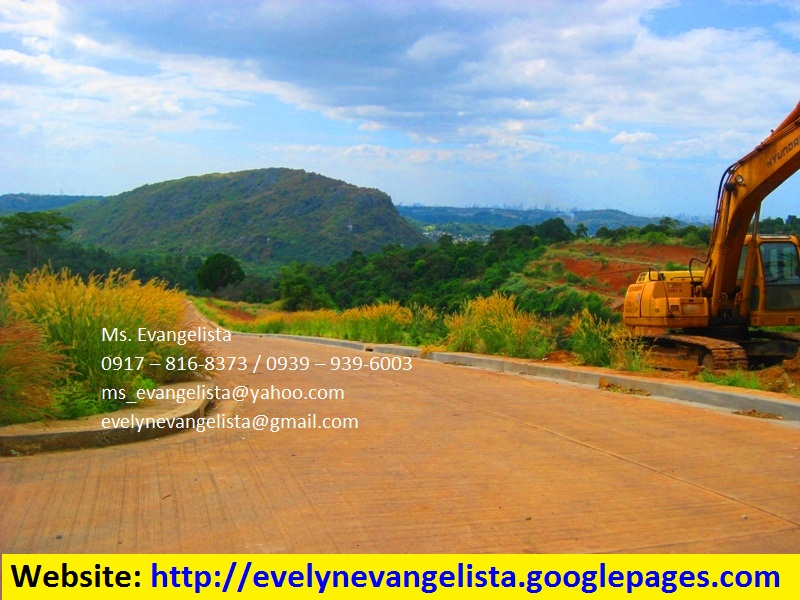 FOR SALE: Lot / Land / Farm Rizal 1