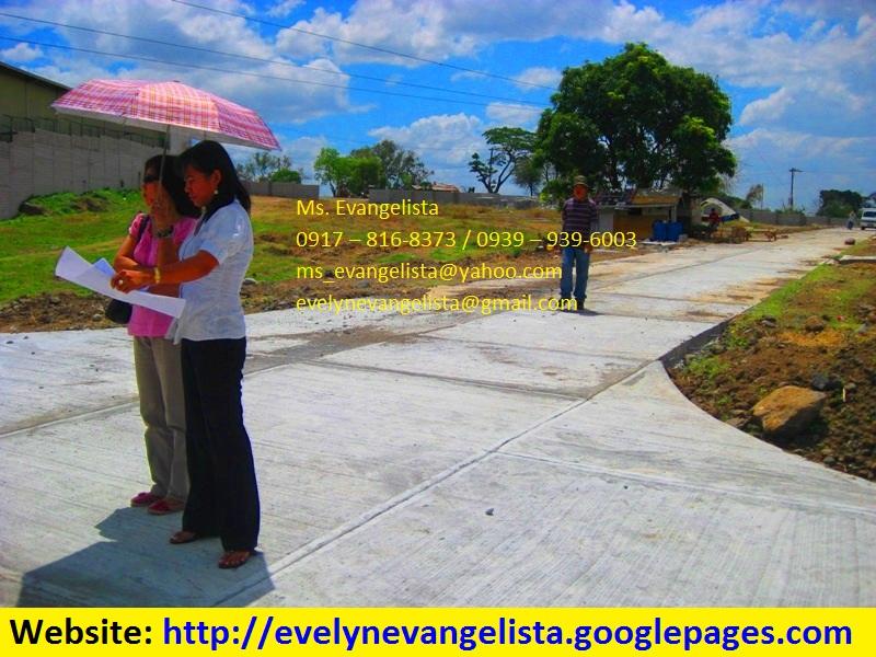 FOR SALE: Lot / Land / Farm Bulacan 1