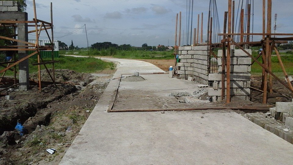 FOR SALE: Lot / Land / Farm Tarlac 4