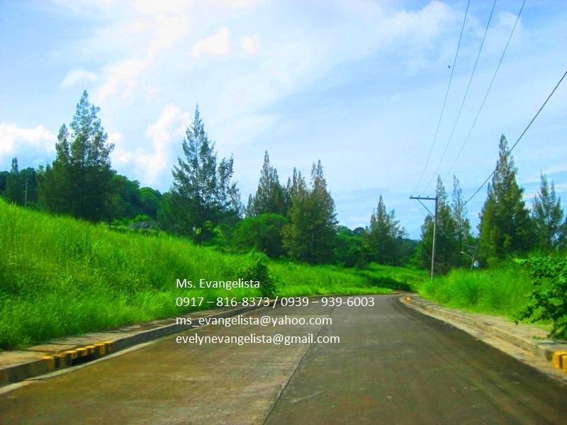 FOR SALE: Lot / Land / Farm Zambales 2