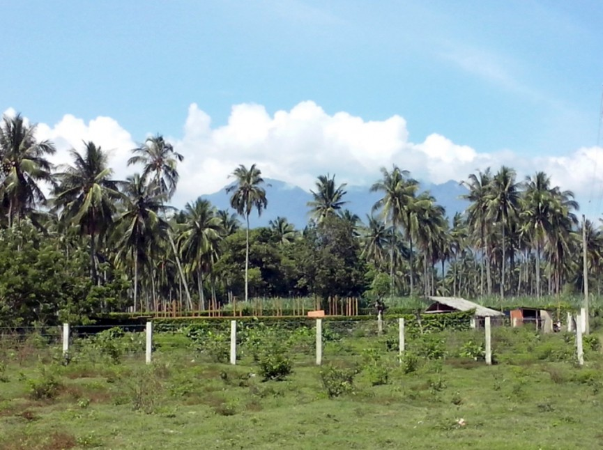 FOR SALE: Lot / Land / Farm Negros Occidental > Bacolod City