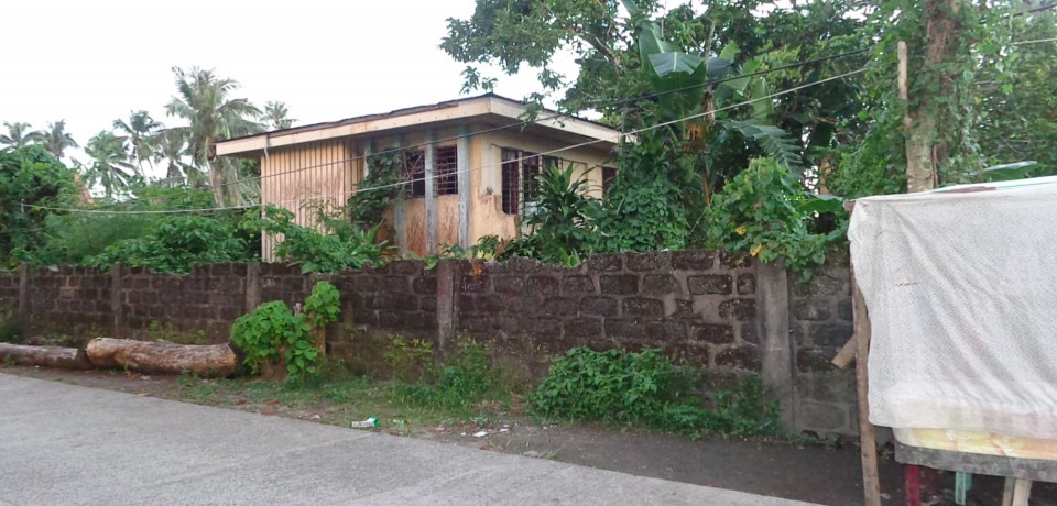 FOR SALE: House Eastern Samar